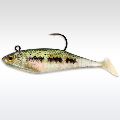 Storm Wildeye Swim Shad 3 BB