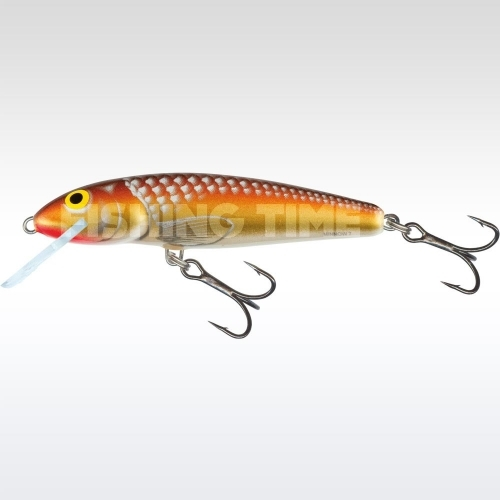 Salmo Minnow 7 F GM