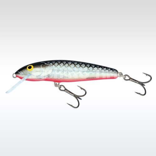 Salmo Minnow 7 F GS