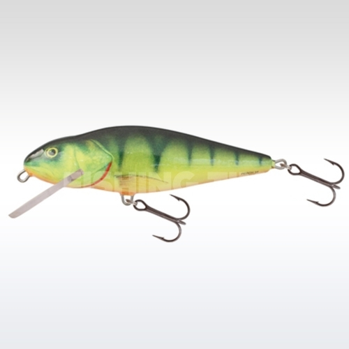 Salmo Perch 12 F HP