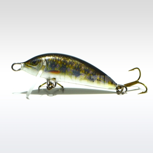 Hegemon Lucky 3 F Trout Brown