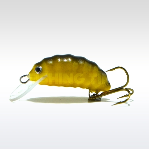 Hegemon Worm 3 F Brown Yellow