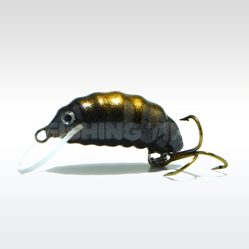 Hegemon Worm 3 F Black Gold