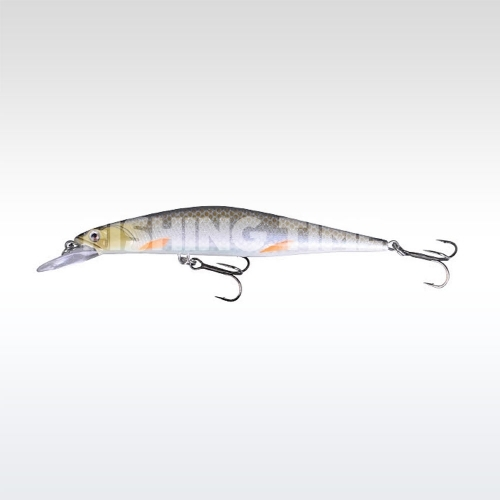 Savage Gear Prey 8.9 SP 01-Roach