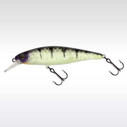 Illex Squad Minnow 95 SP Table Rock Perch
