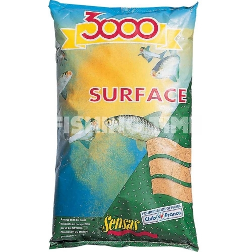 3000 Surface