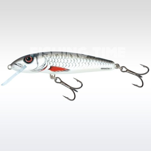 Salmo Minnow Floating 7 D
