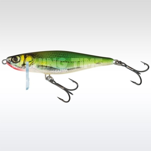 Salmo Thrill 4 EF