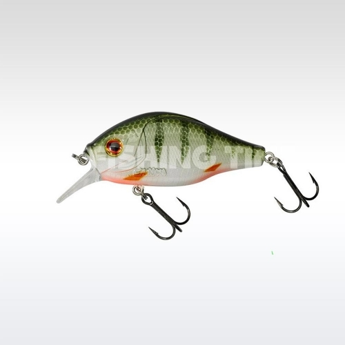 Gunki Dogora 65 F Green Perch