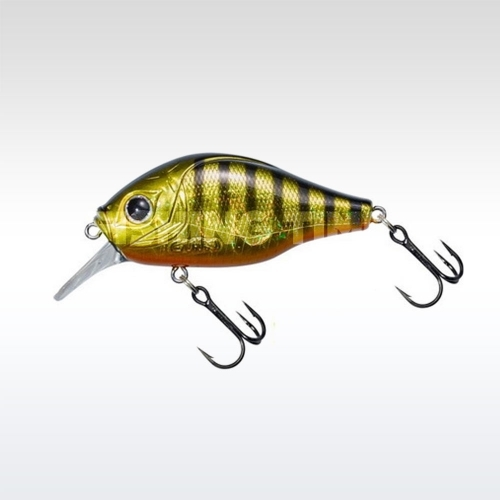 Pezon & Michel / Gunki Dogora 65 F Gold Stripe